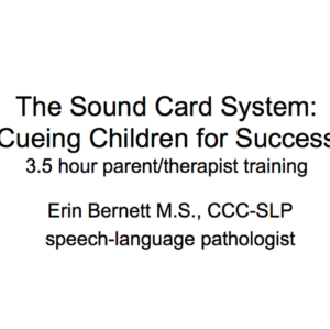 Sound Card System
